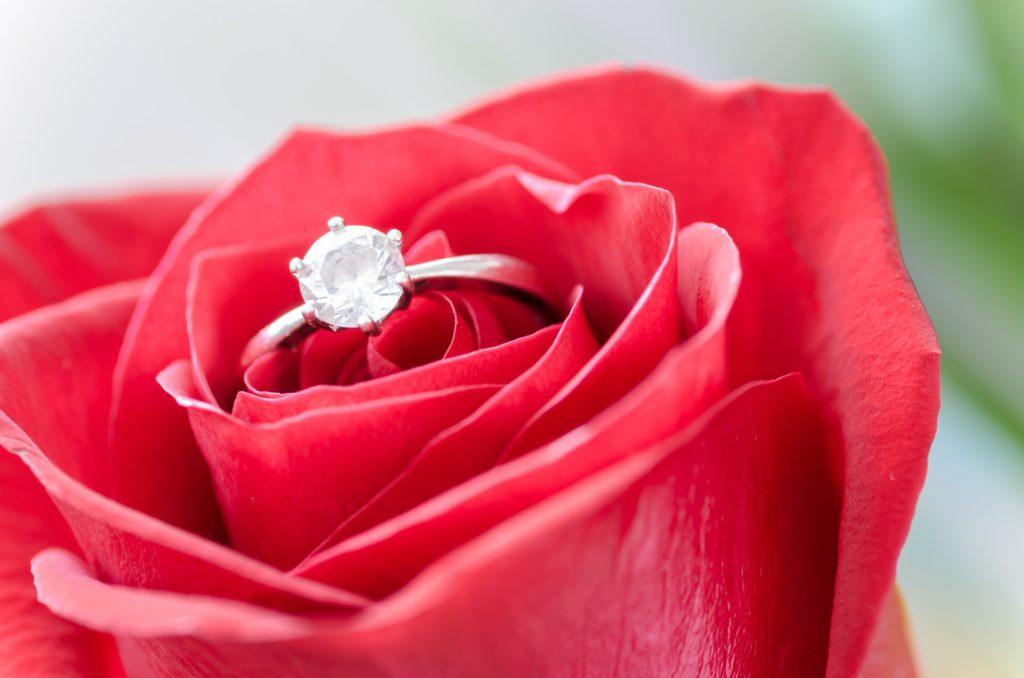 Róża i pierścionek